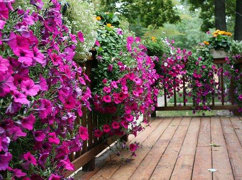 Így kertészkedjünk napfényben!