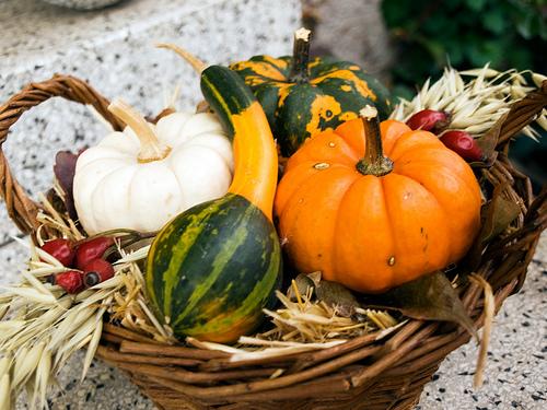 """Képtalálat a következőre: """"őszi tök dekorácio"""""""